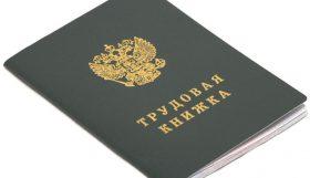 trudova 280x161 - С 01 января 2020 года планируется ввести электронные трудовые книжки