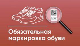 """8f6575117326800d2309462f2f661a25 280x161 - Бесплатный вебинар """"Как организовать торговлю маркированной обувью"""""""